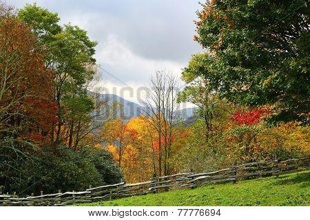 Fall Mountain Scene