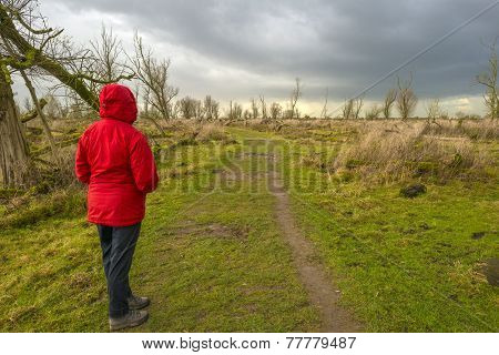Deteriorating weather over nature in autumn