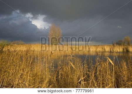 Deteriorating weather over the shore of a river at fall