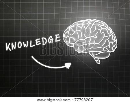 Knowledge Brain Background Knowledge Science Blackboard Gray