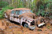 picture of scrap-iron  - An old rusted out scrap car that has been abandoned in the woods - JPG