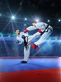 pic of arena  - Two professional female karate fighters are fighting on the grand arena - JPG