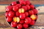 pic of seed bearing  - Red acerola  - JPG