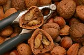 foto of nutcracker  - Composition of walnuts almonds and hazelnuts with nutcracker