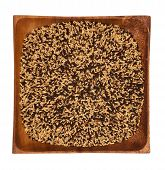 pic of mixture  - Mixture of seeds for canary in bowl - JPG