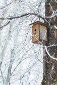 stock photo of nesting box  - Nesting box under snow during the winter - JPG