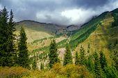 picture of shan  - Way to Kaindy Lake in Tien Shan mountain Kazakhstan - JPG