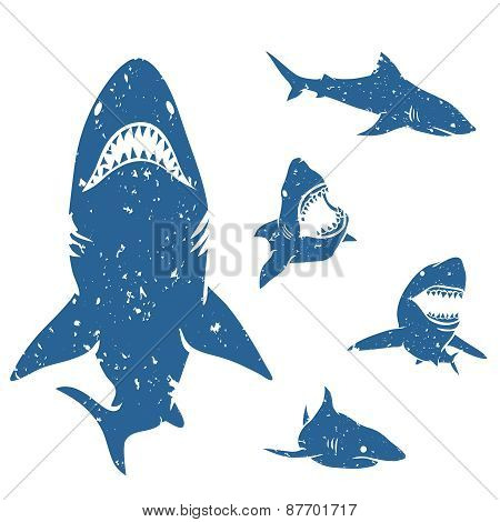 Set of Sharks