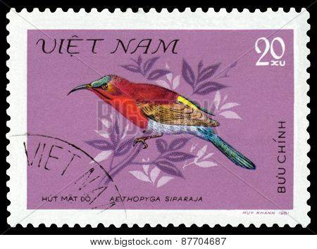Vintage  Postage Stamp. Bird Aethopiga Siparaja.