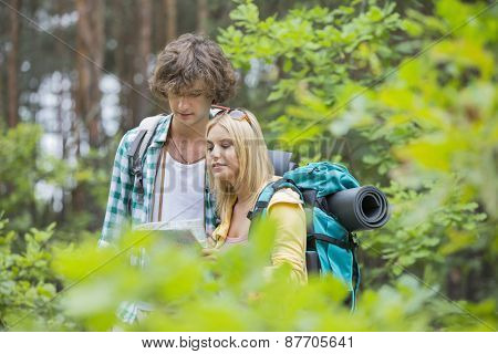 Hiking couple reading map together in forest