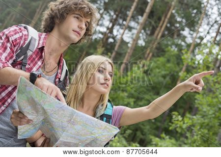 Hiking couple with map discussing over direction in forest