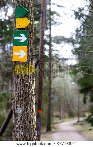 Arow Signs On Tree