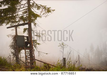 Shelter For Moose Hunting