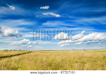 Field And Blue Sky With Clouds.