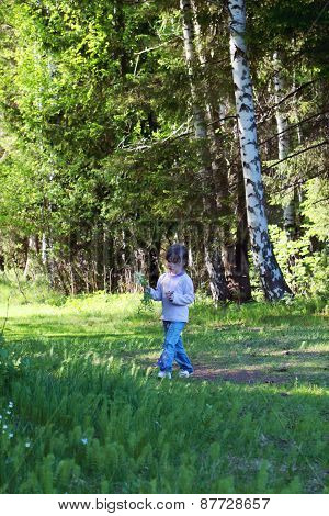 Cute Little Girl In Jeans Walking In Woods And Picking Flowers