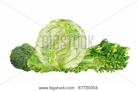 Green Cabbage, Broccoli And Celery Isolated On White