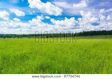 Nobody Outside Field Freedom