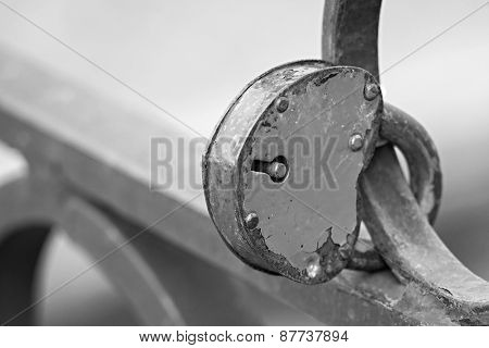 Padlock Of Gray Color On An Iron Fence
