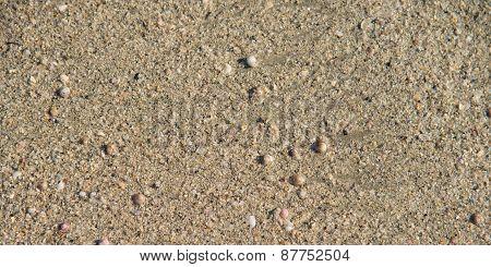 Beach Sand Closeup Background