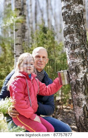 family in the forest collecting birch sap