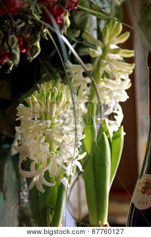 White Hyacinths And A Bottle Of Wine