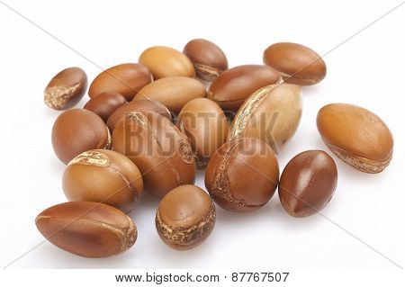 Seeds Of Argan On White,a Close Up On White Background