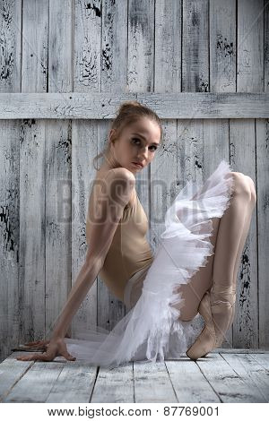 Young graceful ballerina