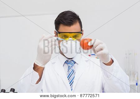 Scientist doing injection to tomato in the laboratory