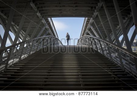 Footbridge Leopold-sedar-senghor, Paris, France