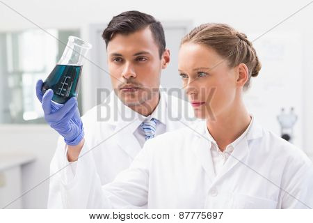 Concentrated scientists holding beaker with fluid in laboratory