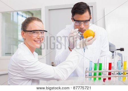Scientists injecting orange in the laboratory