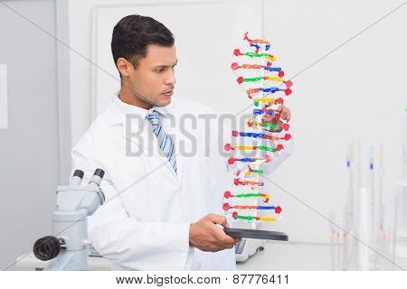 Focus scientist looking at DNA helix in the laboratory