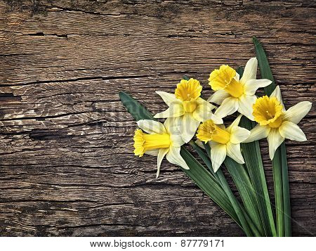 Flowers Yellow Daffodils On A Wooden Vintage Background