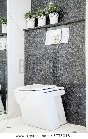 Toilet In Marble Bathroom