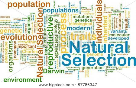 Background text pattern concept wordcloud illustration of natural selection