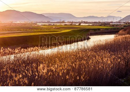 Sunset Illuminates The Fertile Fields And Water Canals