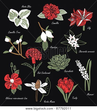 Vintage Flowers Illustration 2