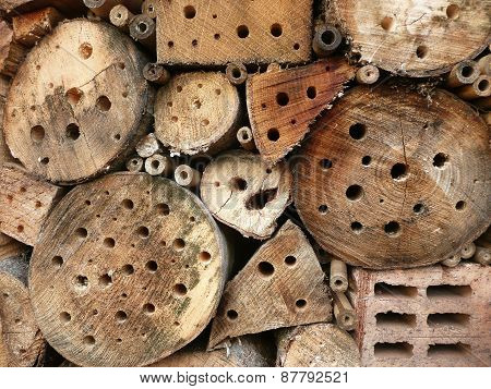 Wild insect hotel in details