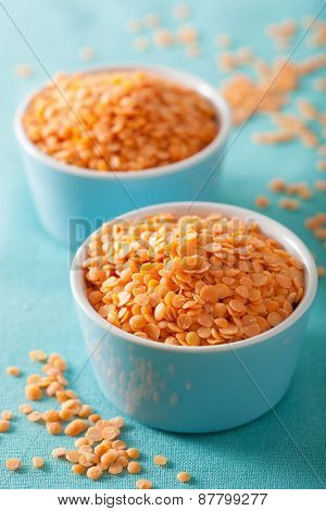 raw healthy red lentils in blue bowls