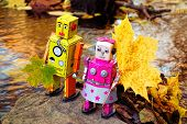 picture of comrades  - Two toy robots with autumn leaves on the small rock in the middle of the small river - JPG