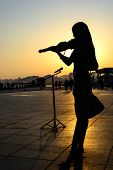 image of violin  - Silhouette of Girl playing the violin at sunrise - JPG