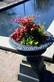 picture of planters  - Flowers in bloom in an urn planter by a reflection pool - JPG
