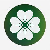 stock photo of fourleaf  - Four leaf clover - JPG