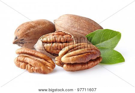 Pecans with leaves