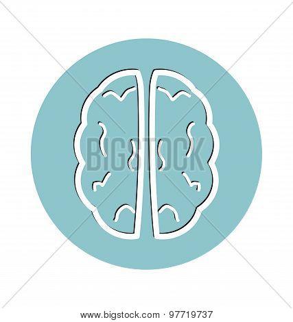 Human Brain, Medacal Icon Concept