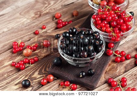 Various Seasonal Berries