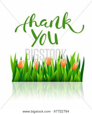 Thank you with tulip flowers