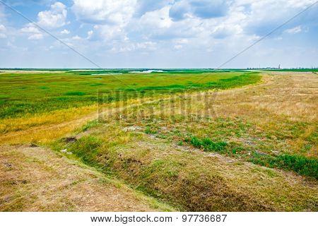 Half Green And Half Dry Grass Field.
