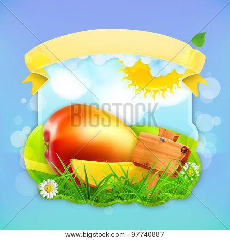 Fresh fruit label mango, vector illustration background for making design of a juice pack, jam jar etc