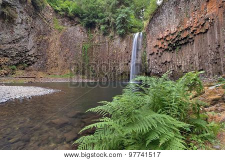 Abiqua Falls In Spring